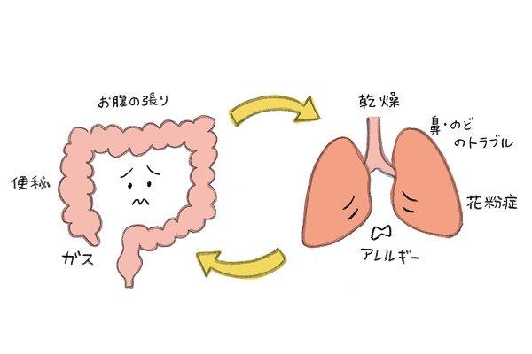 腸への薬膳的アプローチで便秘解消、美肌、免疫アップも。